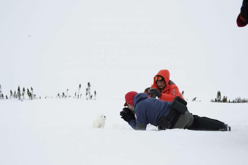 我隨身帶的小熊偶幾可亂真,引起加拿大攝影師趴地拍攝。(圖/時報出版提供)