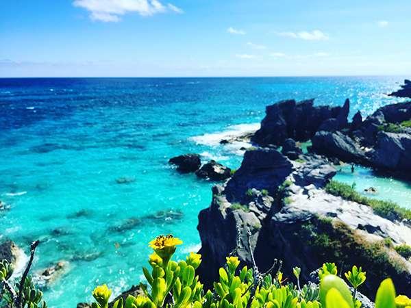 深藍淺藍的海水,古怪嶙峋的石頭圍城的小海灣,懸崖頂上長滿了仙人掌。(圖/李遙岑,澎湃新聞提供)