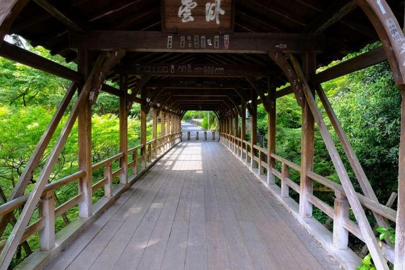 無論走到哪個角落,都被綠意包圍。(圖/ZEKKEI Japan)