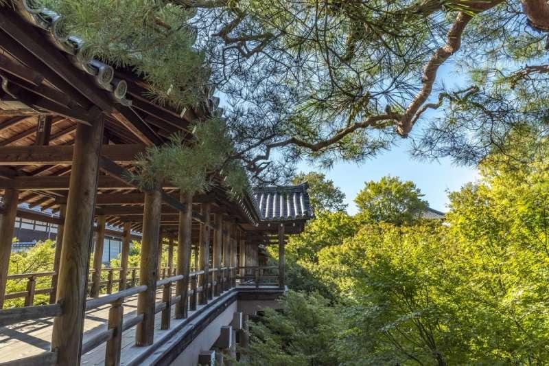 東福寺是京都首屈一指的紅葉名勝。(圖/ZEKKEI Japan)