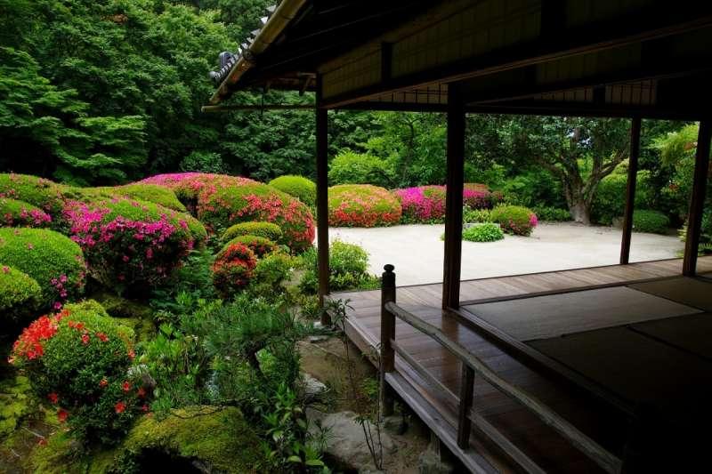 看著這片平靜的風景,心也平靜了下來。(圖/ZEKKEI Japan)