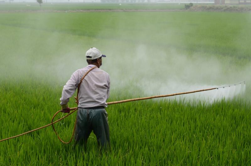 農民噴灑農藥的場景或多或少都見過,然而一想到這些作物終將進入你我口中,總讓人心底不太踏實。(圖/截自 Pixbay,智慧機器人網提供)