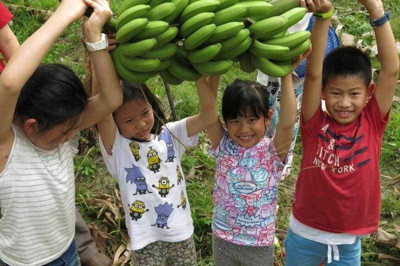 香蕉融入生活可以創造更多產業特色與通路。(王繼維提供)