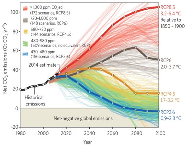 WTFlaFUUUUUUU—圖十:淨排碳作用示意圖,作者指出,其實,這種努力,近來也已見諸於歐洲科學院科學諮詢委員會於2018 年2月間所提出的研究報告(註9)。(取自Nature climate change).png