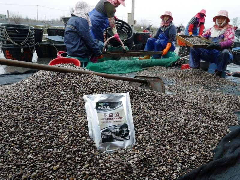 「甲宸生技」以多項微生物益生菌產品幫助漁民們滿載而歸(圖/甲宸生技提供)