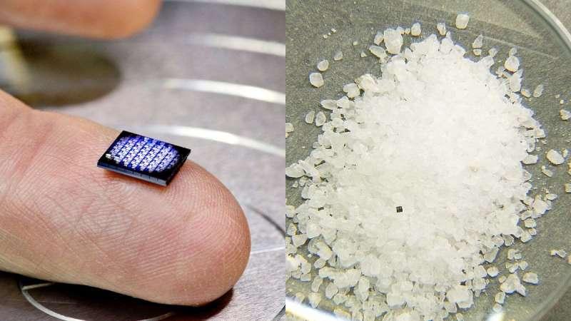 左邊是已嵌入兩塊迷你電腦的主機板,右邊是迷你電腦與鹽巴的大小比較。(圖/智慧機器人網提供)