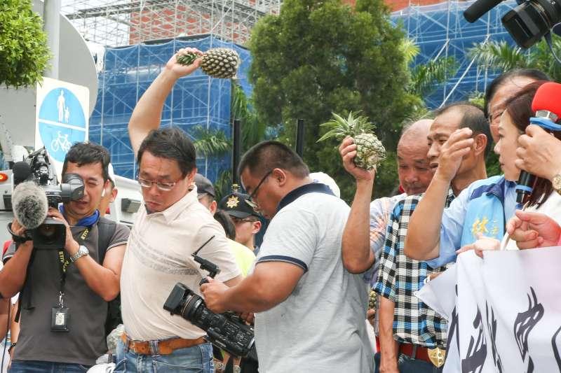 20180704-南部鳳梨農北上到行政院抗議價格崩盤,並怒丟鳳梨。(陳明仁攝)