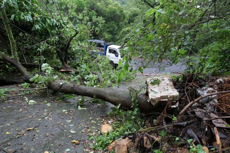 20180711-颱風瑪莉亞襲台,北市松山區福德街221巷落石及樹幹傾倒。(顏麟宇攝)