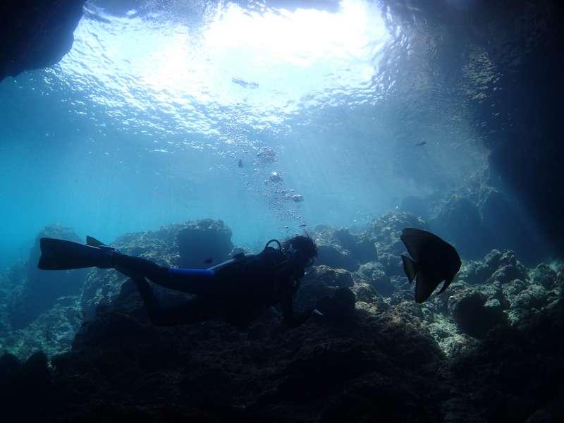 潛水。(作者提供)4