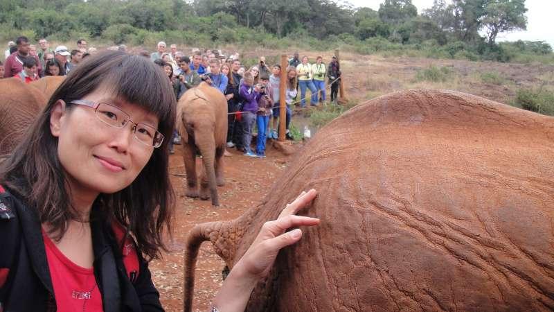 1990年我第一次出國到尼泊爾,騎過大象,現在想想,不知為何當時那麼不懂事?摸過牠們皮膚,是非常粗糙的,身上的毛,也好硬。(圖/謝幸吟提供)