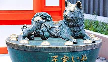 「水天宮」的「子寶犬」被眾多的參拜者摸成了金色(圖/樂吃購!提供).