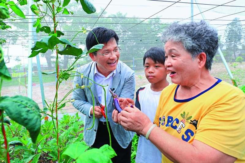 林佳龍市長參訪當天,也與開心農場裡的同學及阿嬤一起享受田園樂。(圖/台中市政府提供)