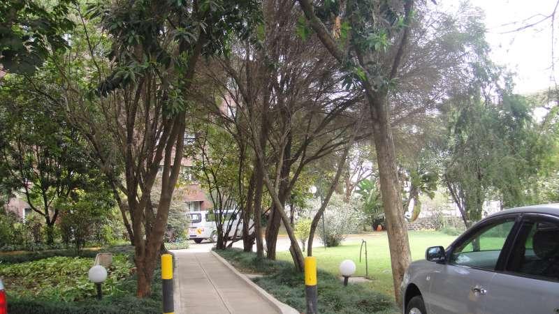 世界銀行肯亞辦公室的周圍花草綠地,但戒備森嚴,得經過護照確認等五道安檢程序,才能從大門進到辦公大樓。(圖/謝幸吟提供)