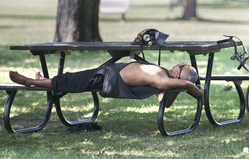 今年夏天,熱浪侵襲加拿大魁北克省;7月5日,魁北克省蒙特婁一名男子躲在樹蔭下休息(AP)