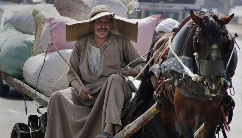 2015年8月,一名埃及開羅的農夫戴著臨時製成的帽子遮陽(AP)