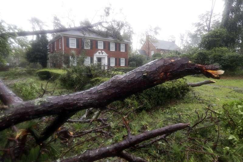 颶風「佛羅倫斯」造成北卡羅萊納州濱海小鎮威明頓的樹木倒塌(AP)