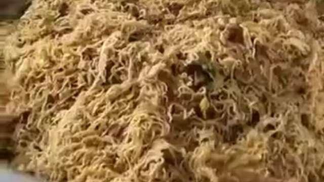 沒有半點蔬菜的素麵(圖/BBC中文網,網路截圖)