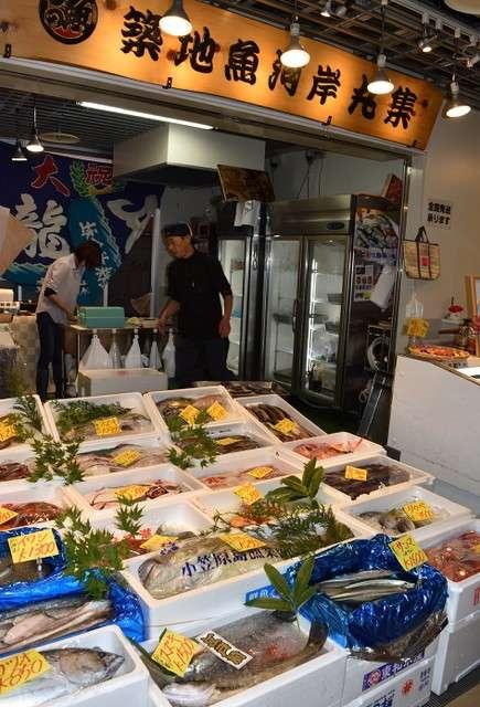 築地魚河岸的鮮魚店擺出許多新鮮魚類,據說餐飲店等業者也會前來採購(圖/潮日本)
