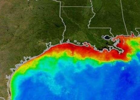20181022-NASA衛星照片,紅色是氮氣充斥的藻類水域,滅絕了水下的生物。(作者提供,取自NASA)