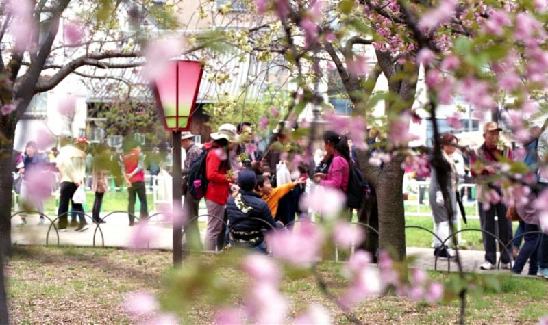 黃金週前夕的大阪,觀光景點皆有許多觀光客。(圖/想想論壇)