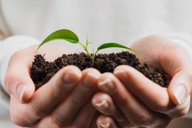 追求環境保護、地球永續,是人類的共同目標,從企業出發落實環保作為,然後由內而外,推動各種環保公益。(圖/Freepik)