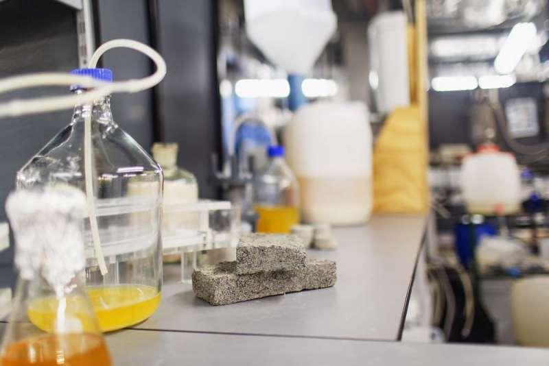 ▲生化磚塊的強度,可視需求調整細菌作用時間而改變。(圖/翻攝自開普敦大學,智慧機器人網提供)