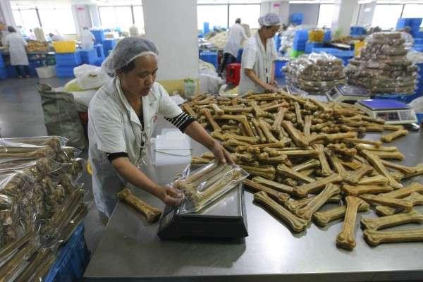 溫州市一間工場內,員工正包裝寵物食品。(圖/*CUP提供)