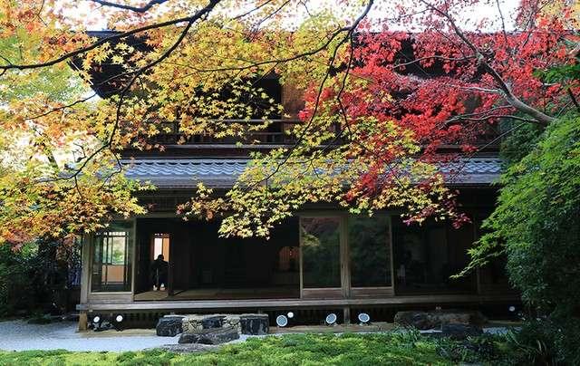 從瑠璃之庭看過去的書院,此為經特別允許後拍攝。(圖/潮日本)