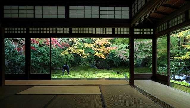 書院1樓看出去的瑠璃之庭。(圖/潮日本)