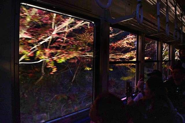 窗外被燈光照亮的紅葉。(圖/潮日本)