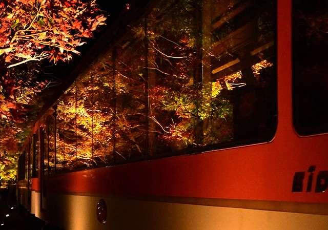 楓樹倒映在車窗上。(圖/潮日本)