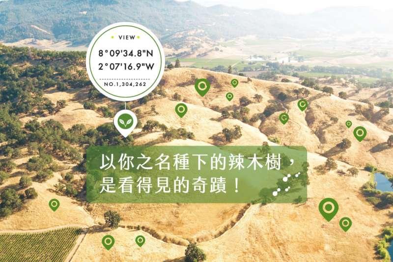 綠藤生機提供辣木樹種下的座標位置,將保養轉化為更有感的減碳奇蹟(圖/綠藤生機)