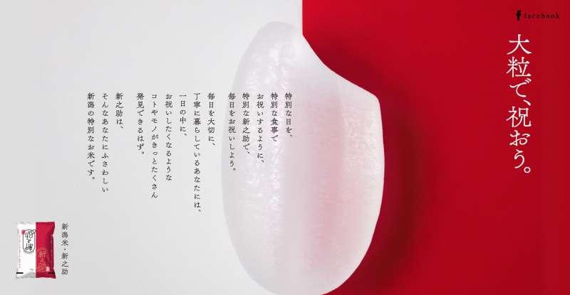 獲得中國解禁的新潟米。(翻攝新潟縣官網)