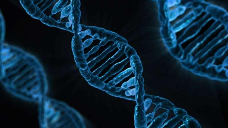 20181201-基因編輯(取自@pixabayCC0)