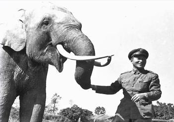 孫立人同大象林旺相見歡。(圖/想想論壇)