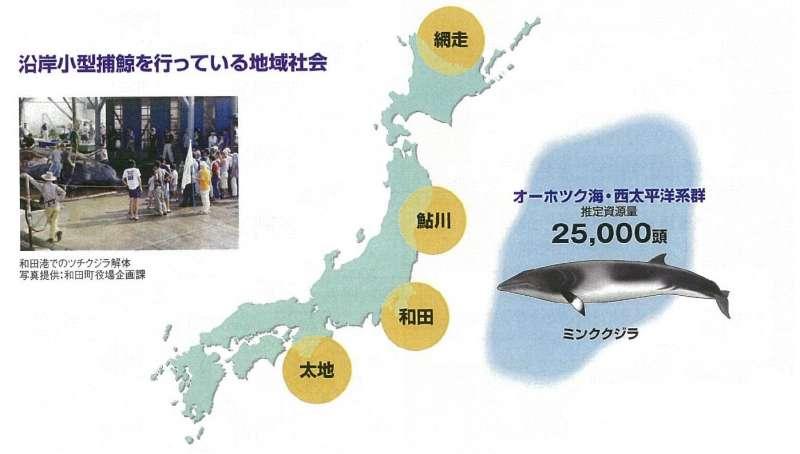日本近海的捕鯨重鎮:網走、鮎川、和田、太地。(日本水產廳)