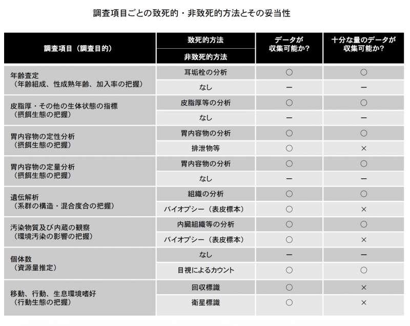 日本調查鯨類的重要項目與方法。(日本水產廳)