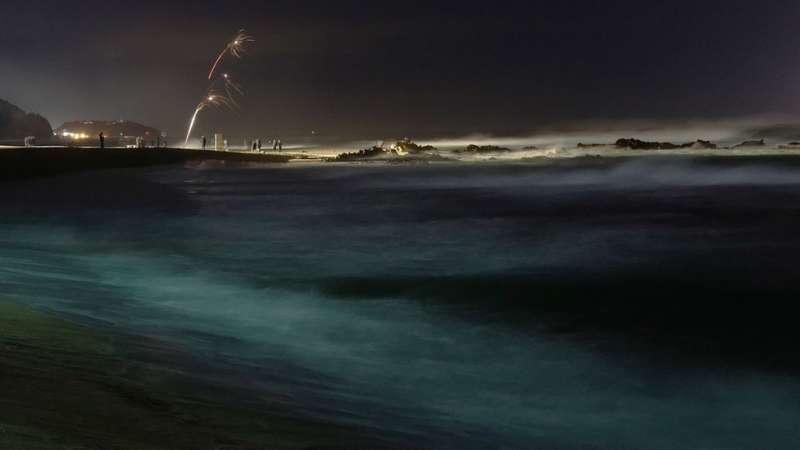 韓國江陵海灘上,慶祝者燃放煙花。(圖/BBC中文網)