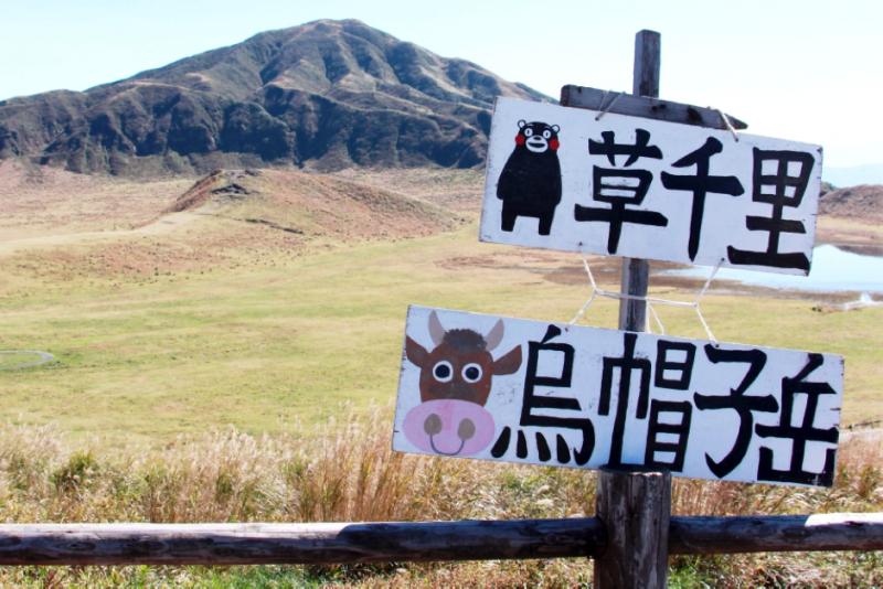 熊本縣阿蘇市的草千里大草原,指路牌上也畫著縣裡的大明星酷MA萌。(圖/陳怡秀,想想論壇)