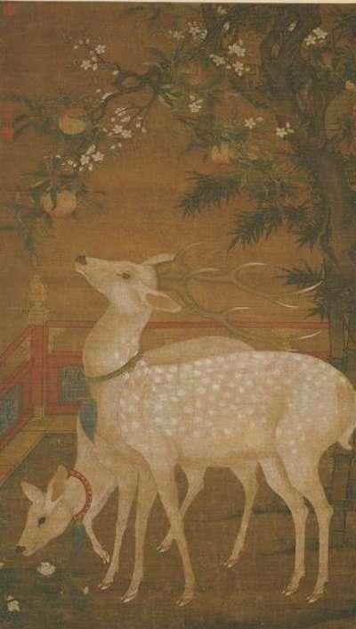 43(宋)佚名《壽鹿圖》,現藏台北故宮博物院(圖/時報出版)