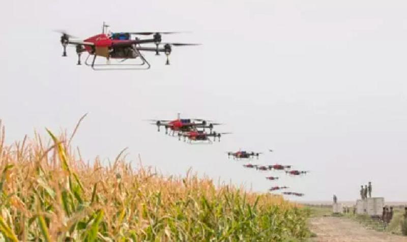 河北一基層供銷社在託管服務的土地上用無人機打藥。(河北省供銷社)
