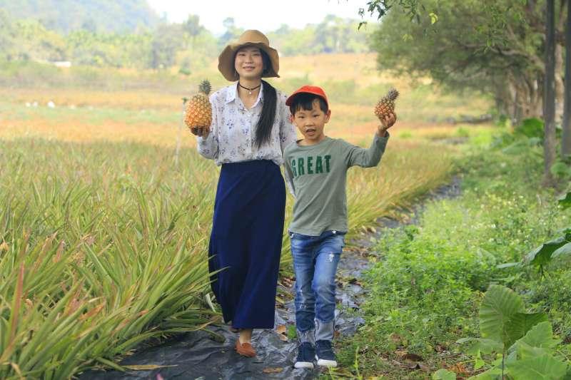 佔地近30公頃的銘泉生態休閒農場除了是觀察自然生態的絕佳去處,還可體驗親手摘鳳梨的趣味。(圖/李義章攝)