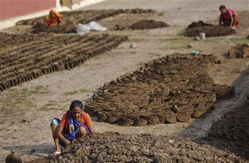 在許多低收入國家與中等收入國家,直接接觸動物排泄物很常見,圖為一位印度婦女正在製作可用來生火的牛糞餅(美聯社)