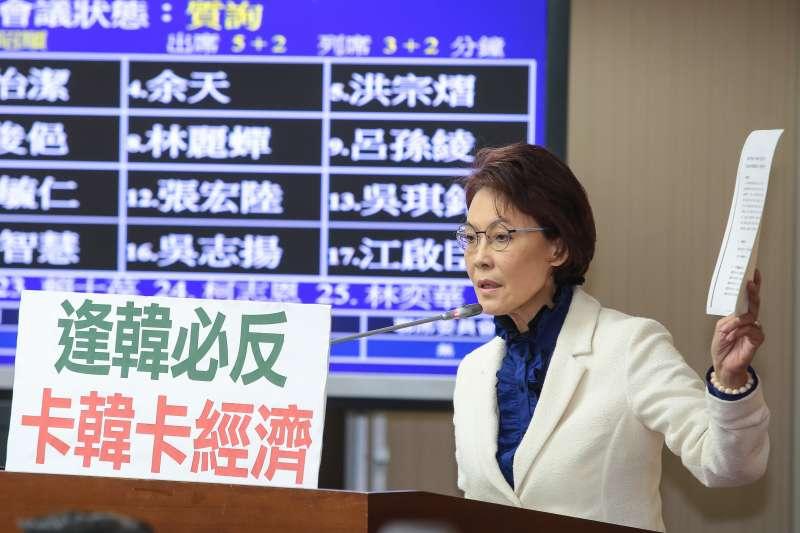 20190327-國民黨立委黃昭順27日於內政委員會質詢。(顏麟宇攝)