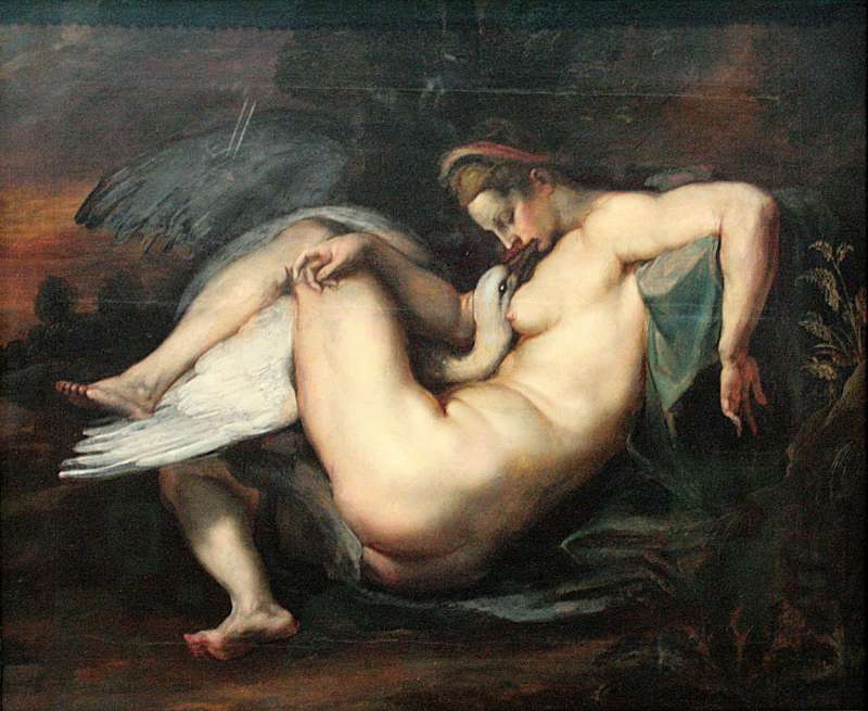 宙斯變成了天鵝,和人妻麗妲交和(圖片取自維基百科)
