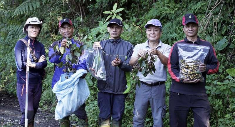 20190423_森林護管員(巡山員)採集「南安小熊妹」的食材。台灣黑熊。(林務局提供)