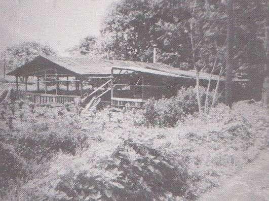 當時石川一雄工作的養豬場。(圖/維基百科)