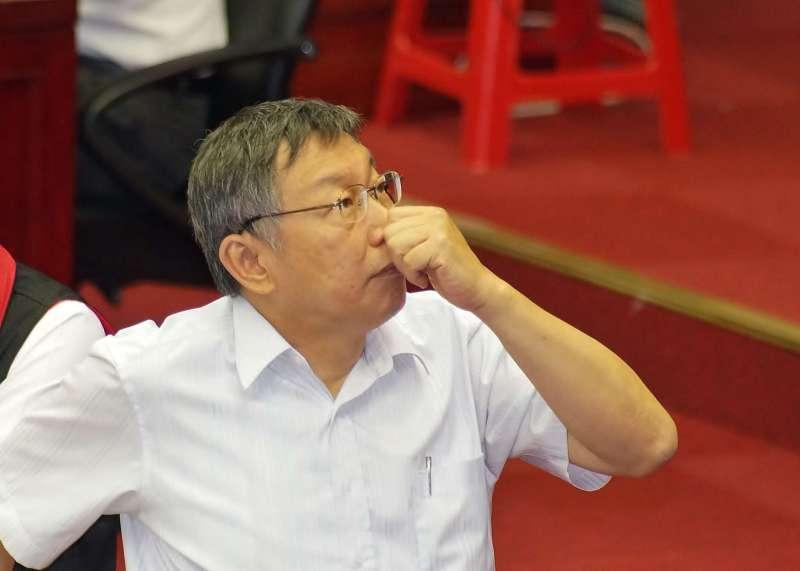 20190529-台北市議會市政總質詢,市長柯文哲出席。(盧逸峰攝)