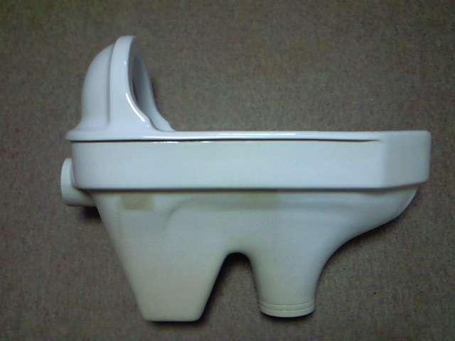 女老師無意間發現和式蹲廁的便池深處竟卡著一個看起來像是「鞋子」的物品。(圖/維基百科)