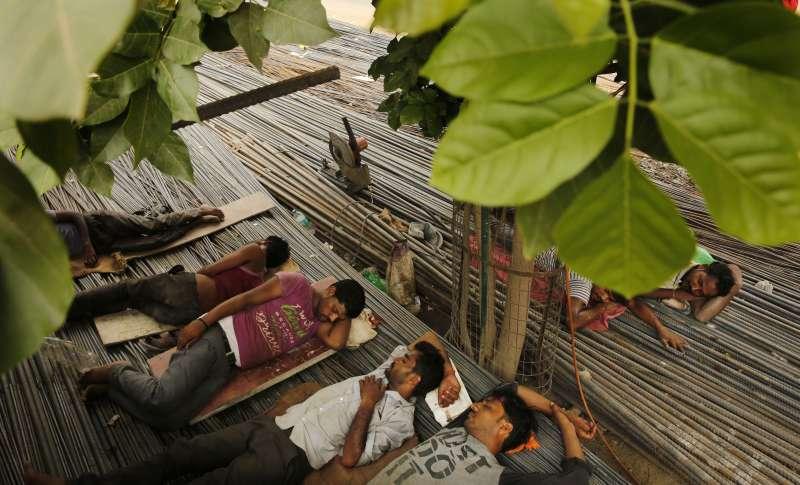 6月13日,印度北方邦安拉阿巴德的勞工在樹蔭下休息(美聯社)